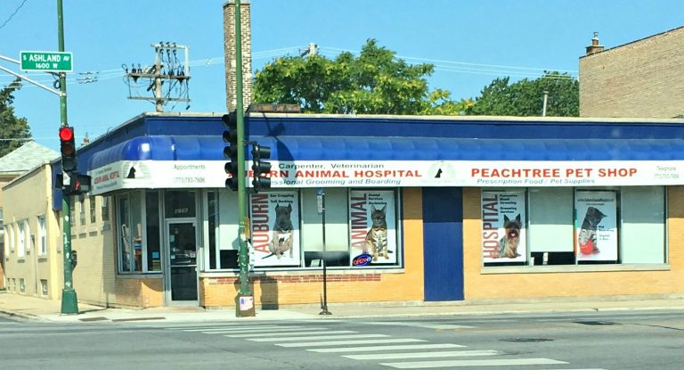 Auburn Animal Hospital located at the corner of 83rd and Ashland